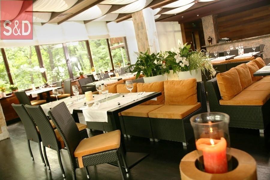 DLux2 - Мягкая мебель для кафе/ресторанов